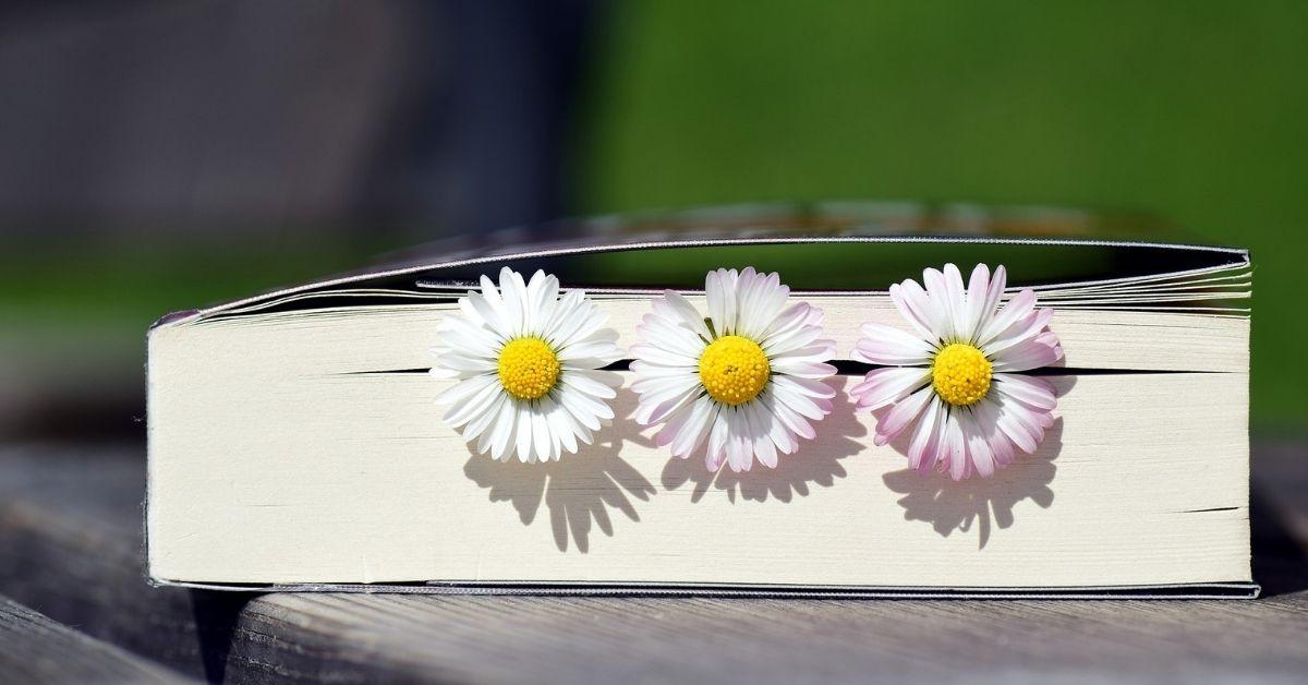 6 книги, с които да посрещнем пролетта