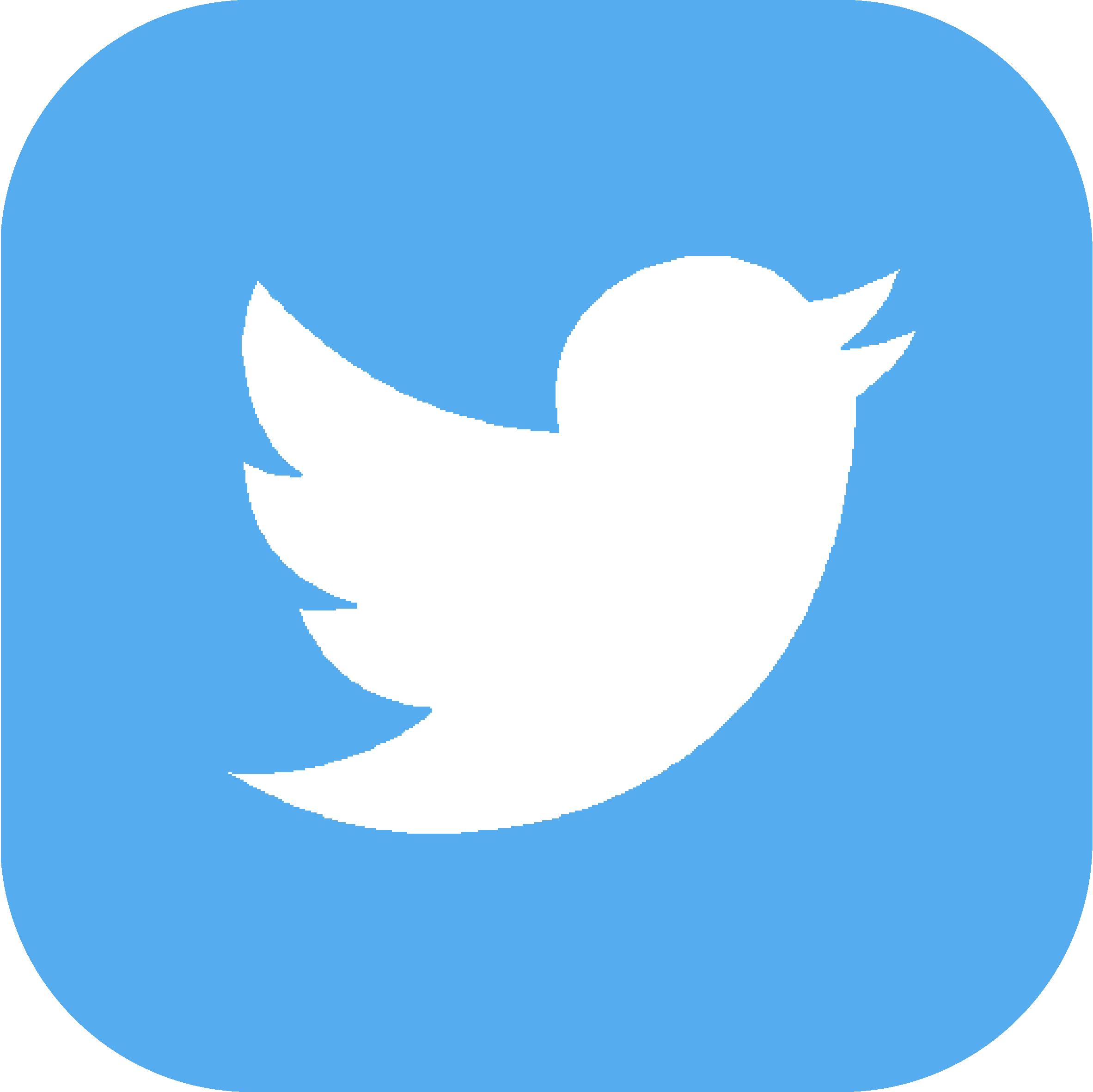 Twitter Hermes